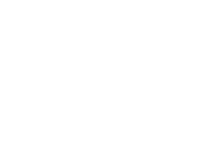 Dallas Real Estate Photographers - The Big Picture Logo